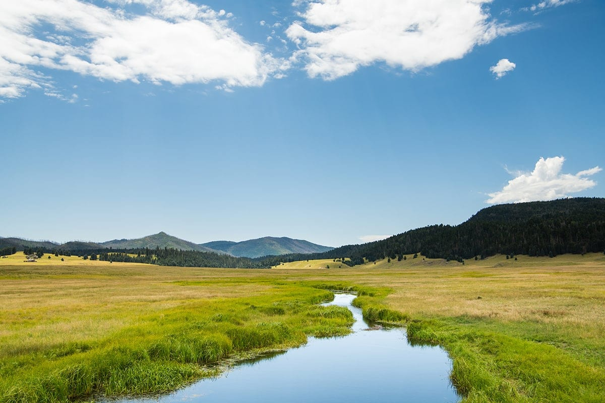stream at Valles Caldera New Mexico