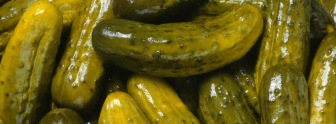 barrio brinery pickles